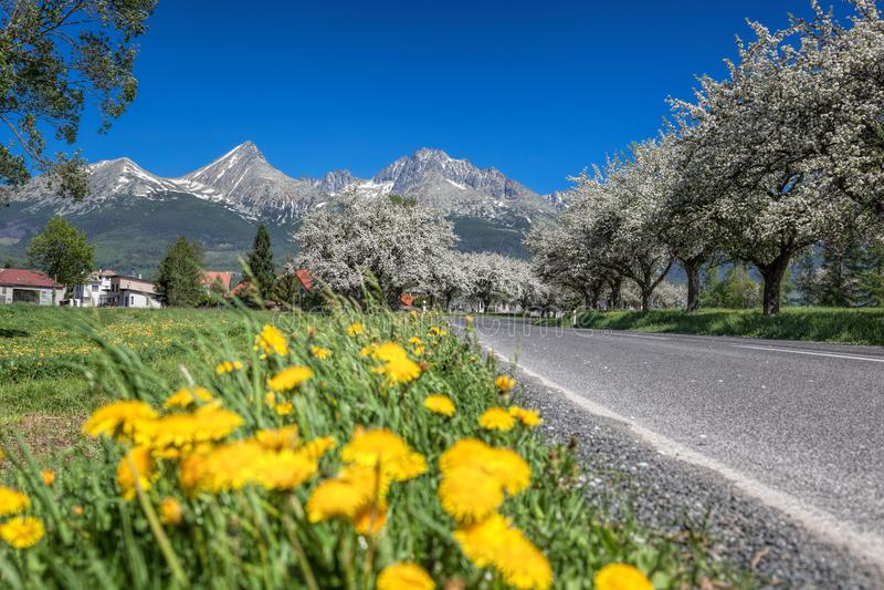 Hohes Tatras während der Frühlingszeit in Slowakei stockfoto