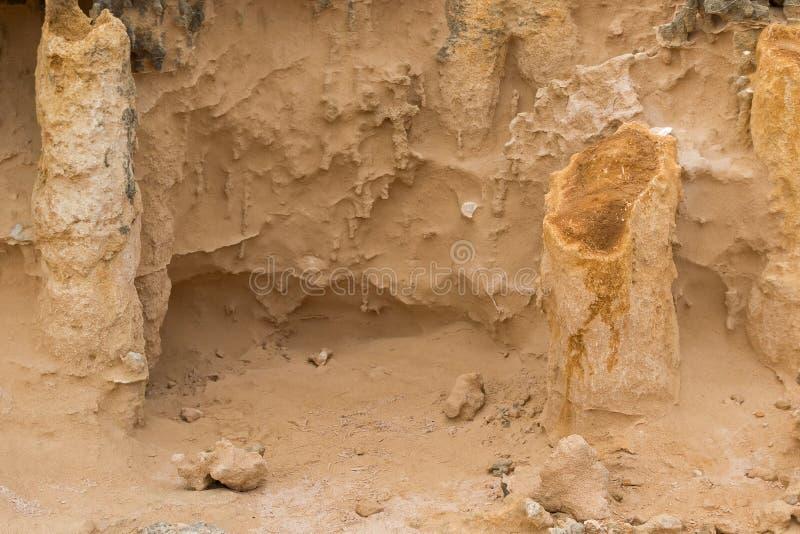 Hohle Rohre des Kalksteins, versteinerter Stamm schaukelt in versteinerten FO lizenzfreies stockfoto