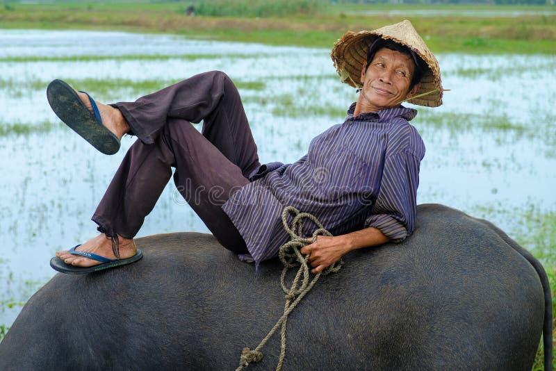 Hoi An/Vietnam, 11/11/2017: Lokale Vietnamese mens met rijsthoed die en/op de rug van een waterbuffel in a liggen ontspannen zitt stock fotografie