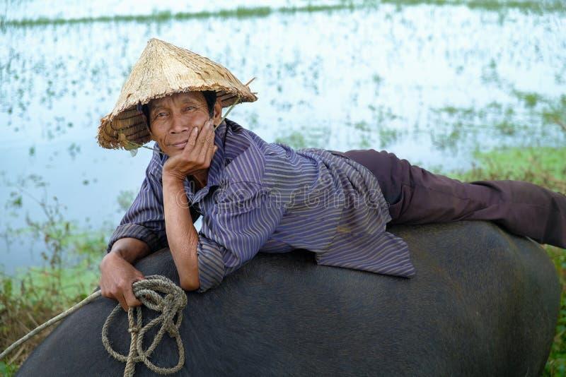 Hoi An/Vietnam, 11/11/2017: Lokale Vietnamese mens met rijsthoed die en/op de rug van een waterbuffel in a liggen ontspannen zitt stock foto