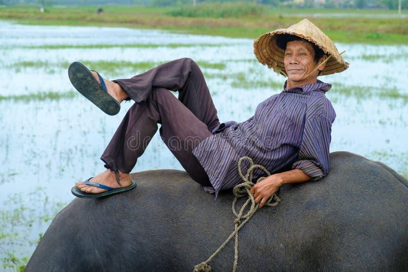 Hoi An/Vietnam, 11/11/2017: Lokale Vietnamese mens met rijsthoed die en/op de rug van een waterbuffel in a liggen ontspannen zitt royalty-vrije stock afbeeldingen