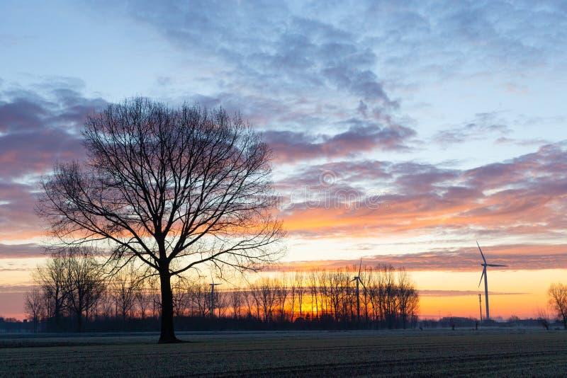 Hoirzon z drzewami i wiatrakiem obrazy royalty free