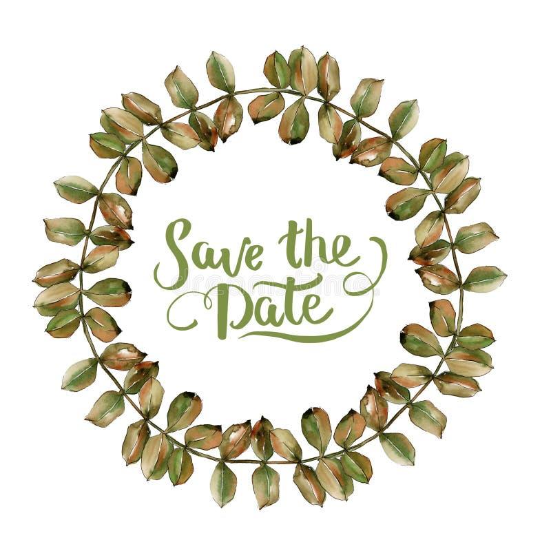 Hoja amarilla del acacia de la acuarela Follaje floral del jardín botánico de la planta de la hoja Cuadrado del ornamento de la f imágenes de archivo libres de regalías