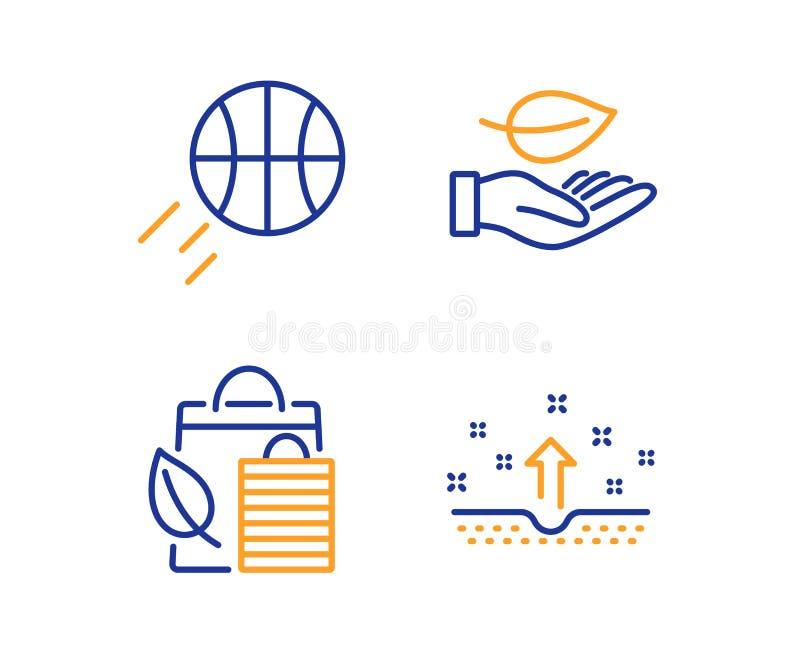 Hoja, bio compras y sistema de los iconos del baloncesto Muestra limpia de la piel Cuidado de la planta, hoja, bola del deporte C ilustración del vector