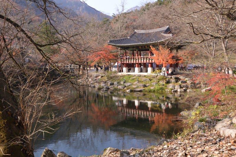 Hoja de arce amarillo-naranja en el templo de Corea Naejangsan fotografía de archivo
