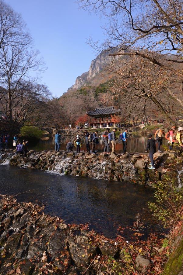 Hoja de arce amarillo-naranja en el templo de Corea Naejangsan fotografía de archivo libre de regalías
