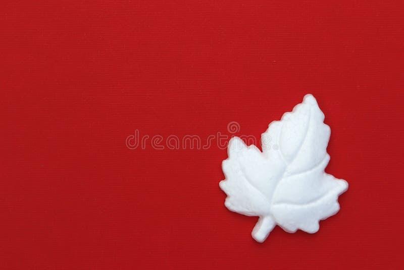Hoja de arce blanca en fondo rojo imagenes de archivo