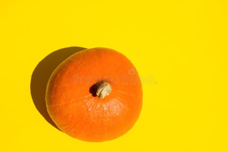 Hoja de arce seca de la calabaza anaranjada de Hokkaido en fondo amarillo sólido Sombras fuertes de la luz del sol estilo del art fotografía de archivo