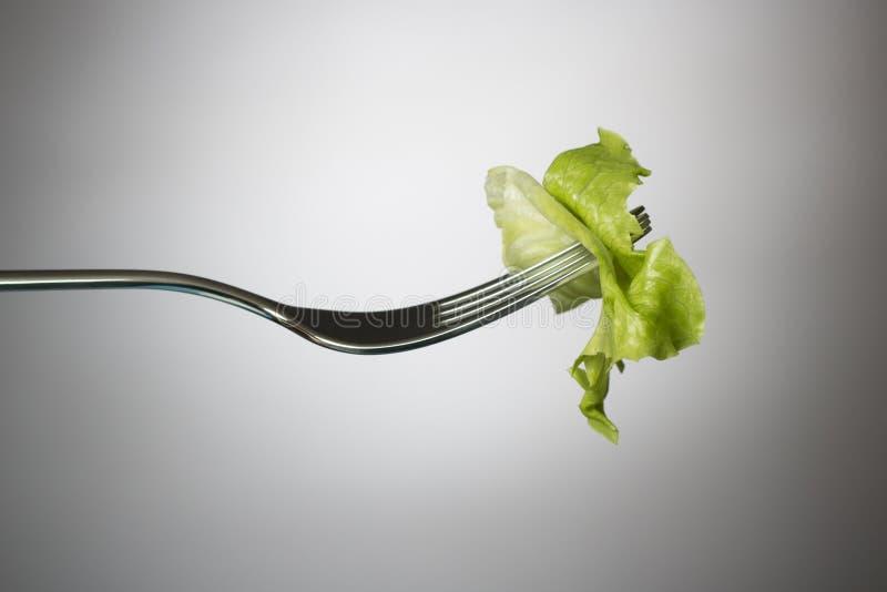 Hoja de la lechuga en una fork imagen de archivo libre de regalías