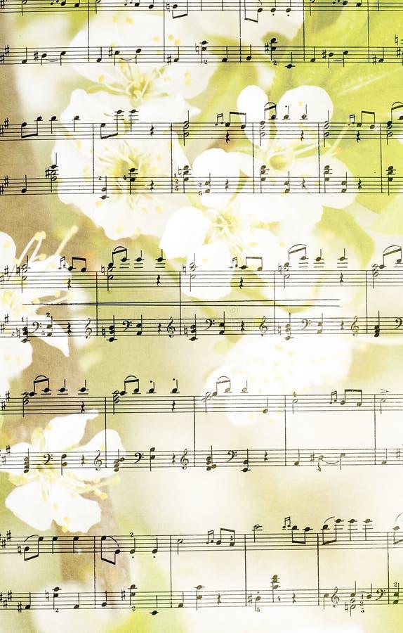 Hoja De Música Contra Fondo Del árbol Floreciente Foto de archivo ...