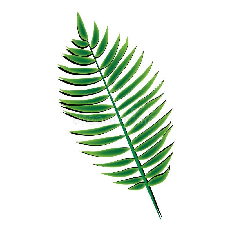 Hoja de palma verde stock de ilustración