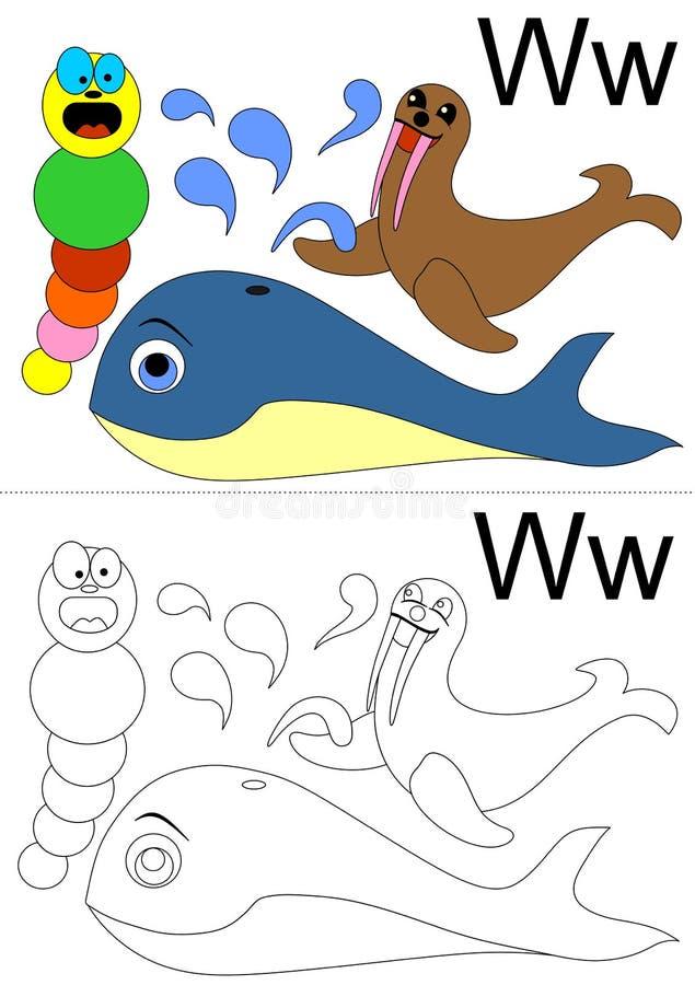 Hoja de trabajo de la letra w ilustración del vector