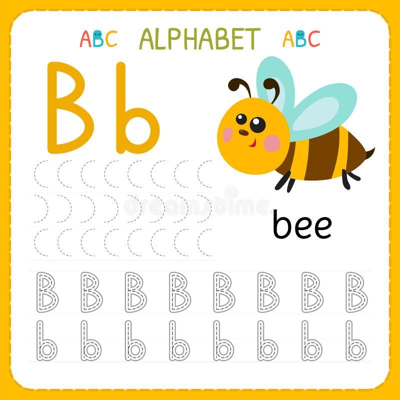 Hoja de trabajo de trazado del alfabeto para el preescolar y la guardería Letra B de la práctica de la escritura Ejercicios para  ilustración del vector