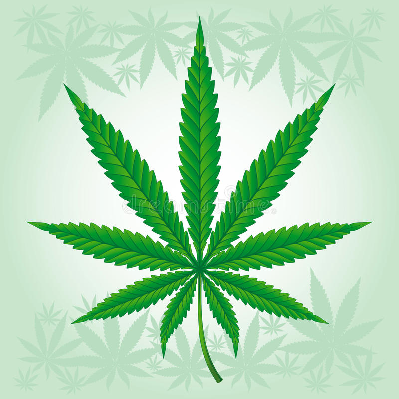 Hoja del cáñamo/de la marijuana/del cáñamo detallada ilustración del vector