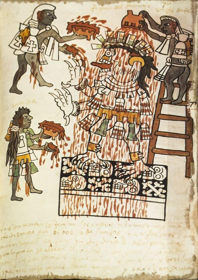 Hoja del libro del facsímil del códice Tudela de Actec foto de archivo libre de regalías