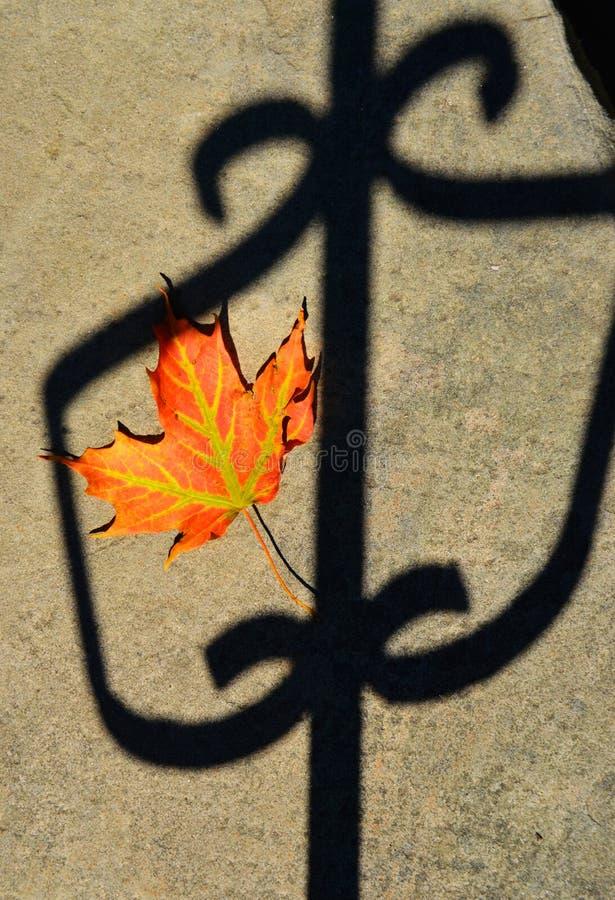 Hoja del otoño en la cerca foto de archivo