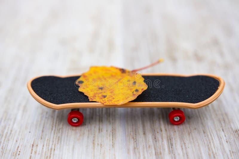 Hoja del otoño en un monopatín El concepto viene otoño fotos de archivo