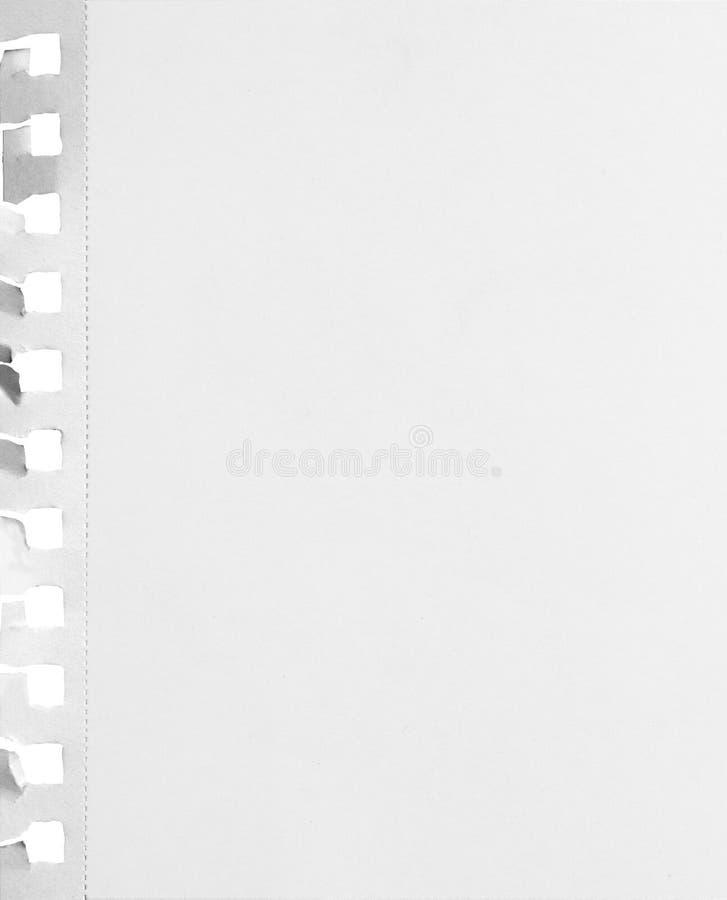 Hoja perforada en blanco del papel del cuaderno con los agujeros rasgados y sombra aislada en el fondo blanco fotos de archivo libres de regalías