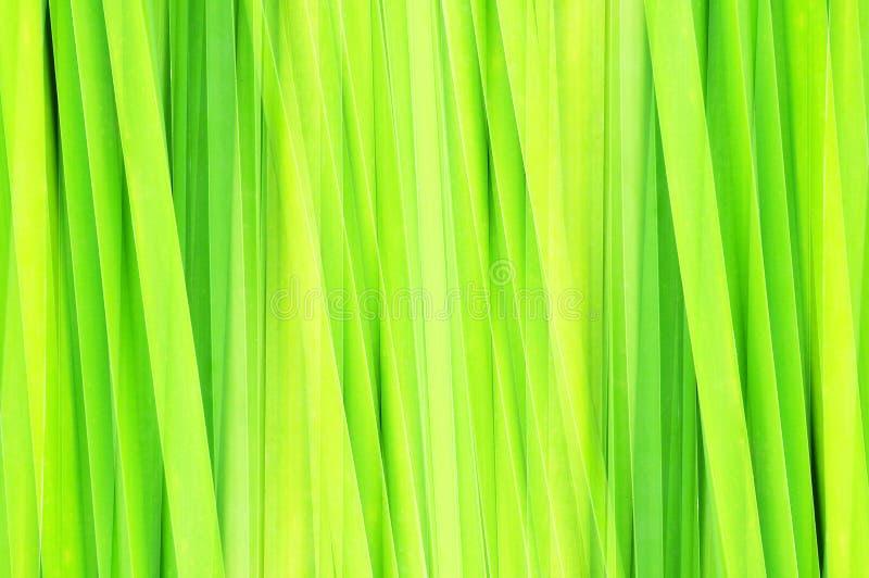 Hoja verde abstracta libre illustration