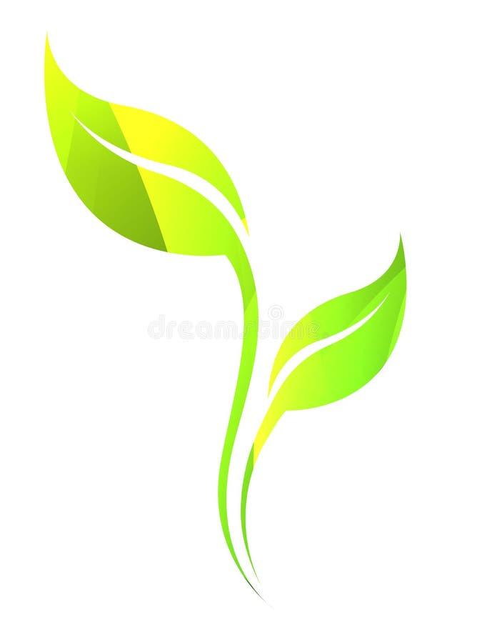 Hoja Verde De La Primavera Del Vector Aislada En Blanco Icono Del ...