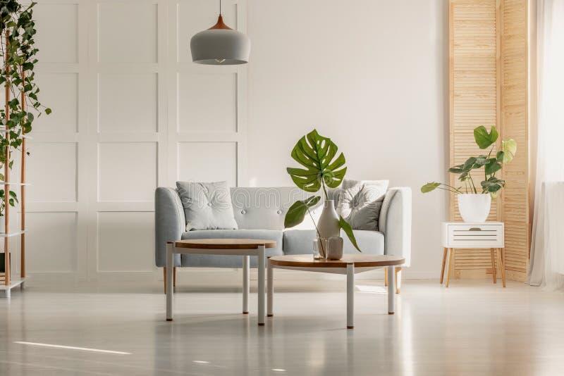 Hoja verde en el florero blanco en la mesa de centro de madera redonda en sala de estar espaciosa con el sofá gris, las plantas y foto de archivo