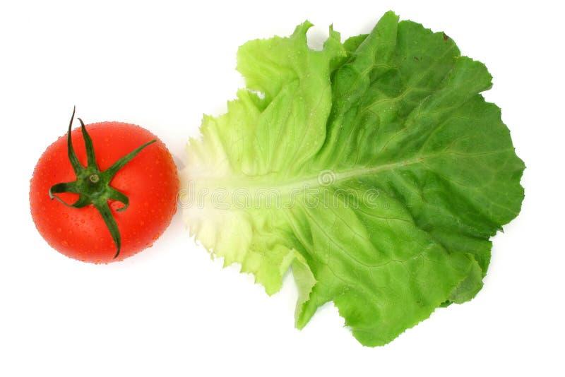 Hoja y tomate de la ensalada foto de archivo libre de regalías