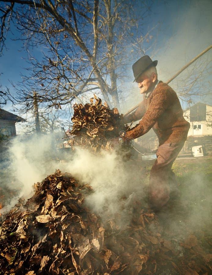 Hojas ardiendo de los muertos del viejo granjero imágenes de archivo libres de regalías