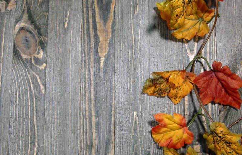 Hojas artificiales de la caída en un fondo de madera fotografía de archivo