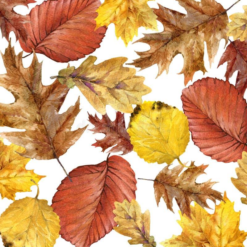 Hojas coloridas del fondo de la acuarela del otoño ilustración del vector