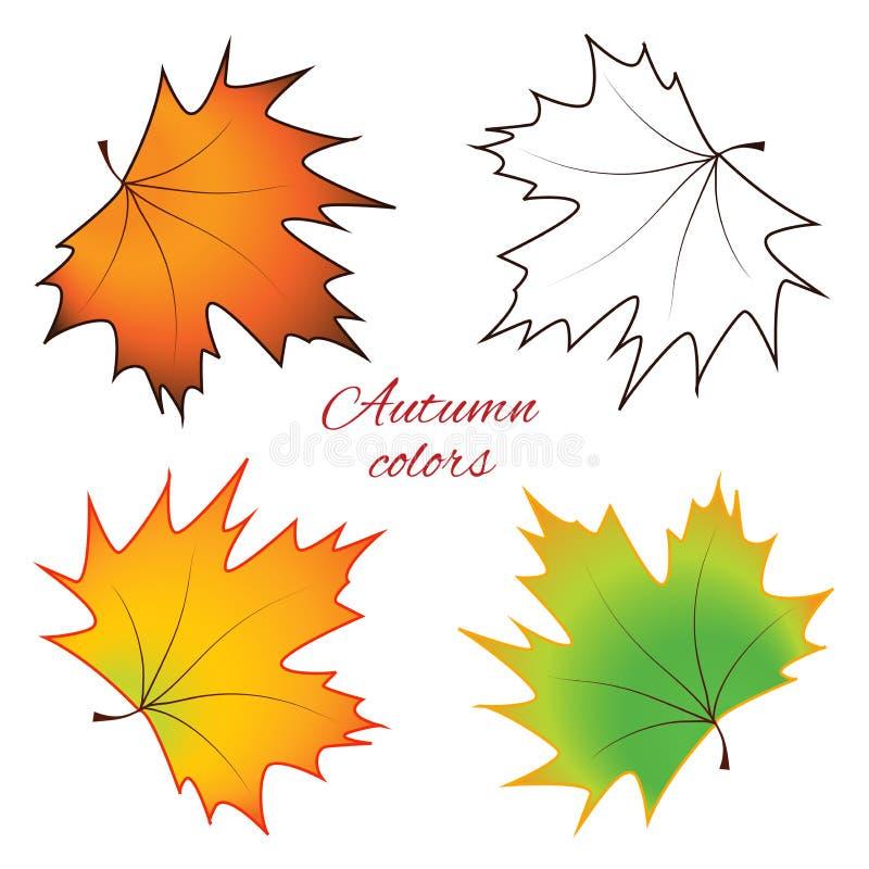 Hojas de arce brillantes del otoño - vector fotografía de archivo