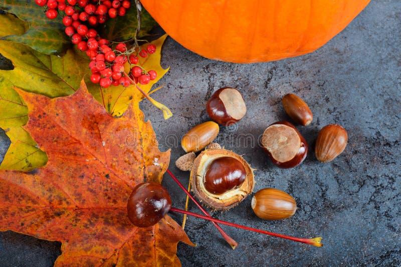 Hojas de arce del otoño con la calabaza y las castañas imagenes de archivo