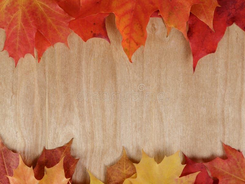 Hojas de arce del otoño en la superficie de madera libre illustration
