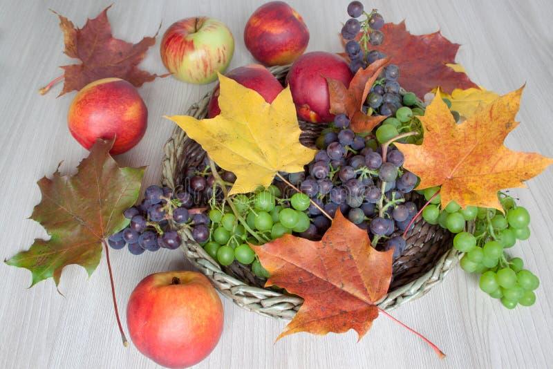 Hojas de arce, nectarina, manzanas, uvas aisladas en un fondo de madera fotografía de archivo libre de regalías