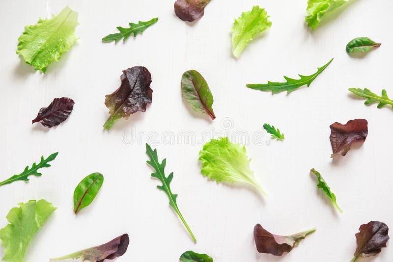 Hojas de la ensalada verde en un fondo blanco Modelo con las hojas de la lechuga Diseño del fondo con las hojas para la ensalada  foto de archivo