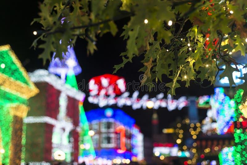 Hojas de la Navidad con el fondo del bokeh imagen de archivo libre de regalías