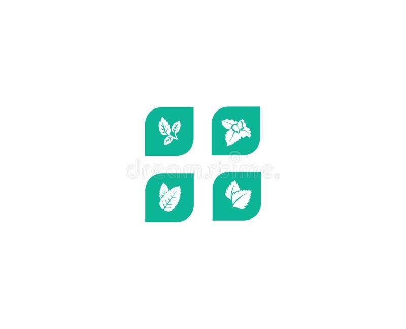 Hojas de menta Vector del icono fijado con las plantas de la menta libre illustration