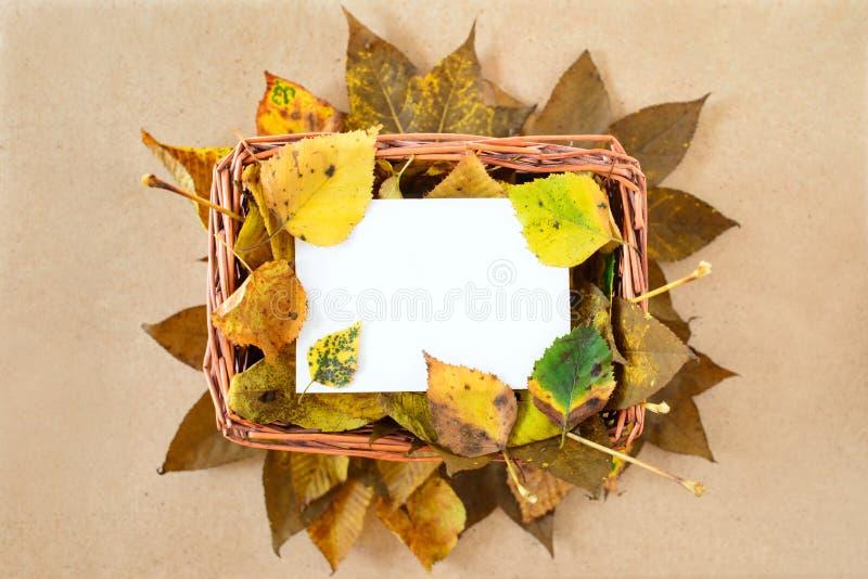 Hojas de otoño amarillas en cesta de la paja con la nota blanca stock de ilustración