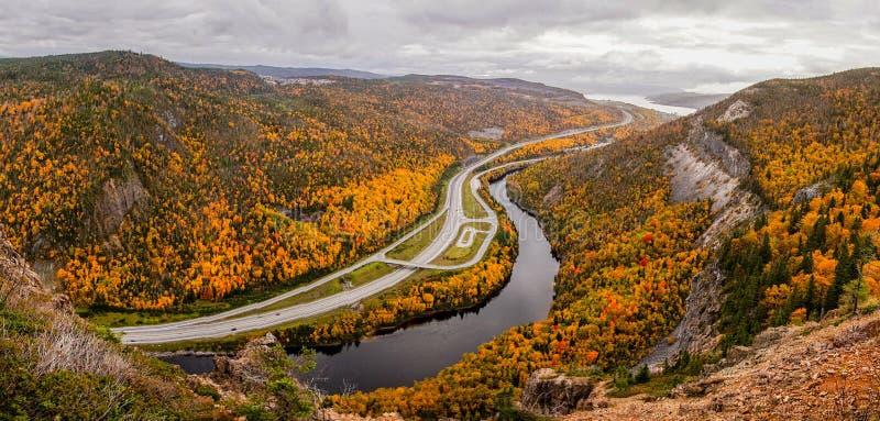 Hojas de otoño amarillas en el arroyo de la esquina, Canadá imagenes de archivo
