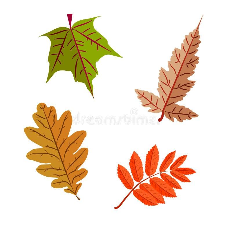 Hojas de otoño coloridas libre illustration