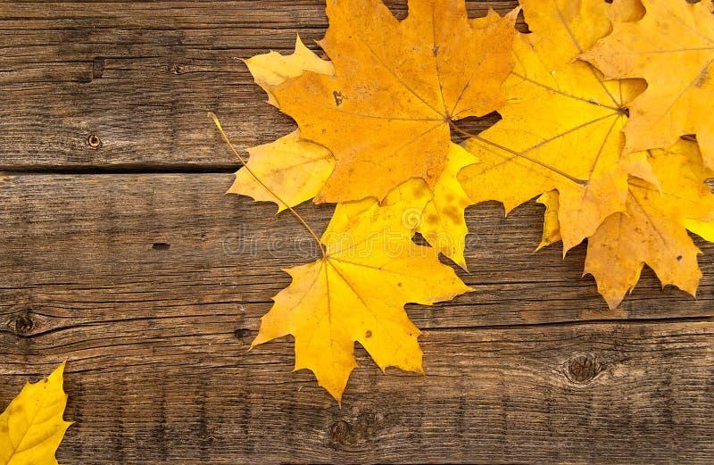 Hojas de otoño coloridas en fondo rústico de madera Visión superior foto de archivo libre de regalías