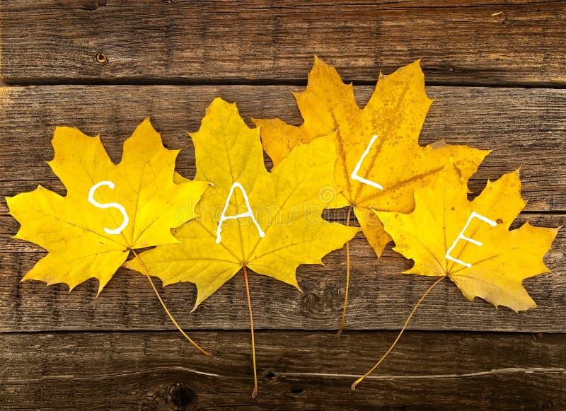 Hojas de otoño con VENTA del texto en fondo de madera rústico Otoño imagen de archivo libre de regalías