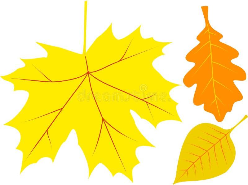 Hojas de otoño del vector fotografía de archivo