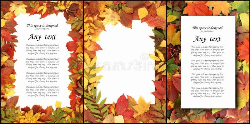 Hojas de otoño en bosque ilustración del vector