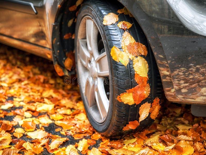 Hojas de otoño en el neumático del coche fotos de archivo libres de regalías