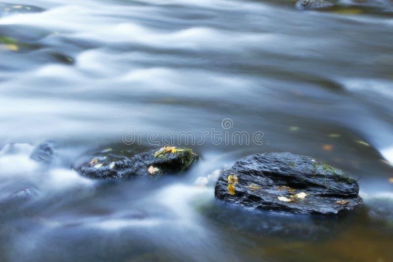 Hojas de otoño en el río fotos de archivo
