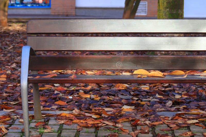 Hojas de otoño en un banco de parque imagen de archivo libre de regalías