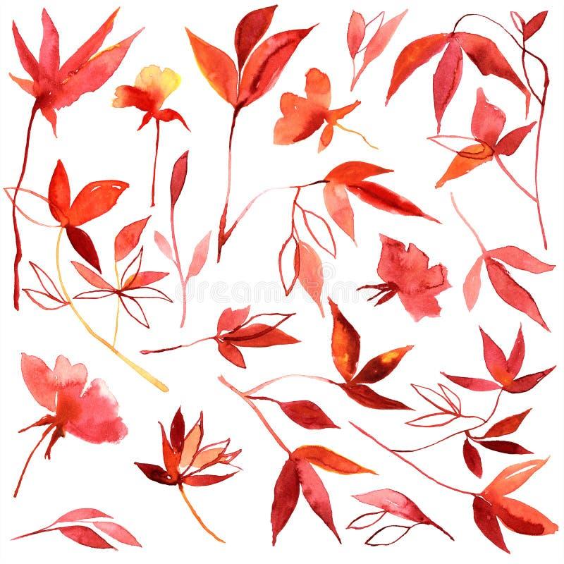 Hojas de otoño rojas de la acuarela y anaranjadas pintadas a mano stock de ilustración