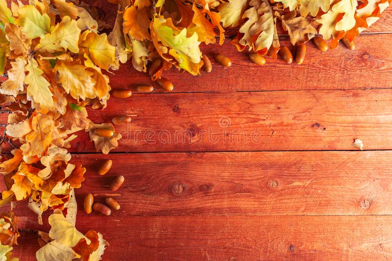 Hojas de otoño y bellotas en fondo de madera rústico Fondo de la caída con el espacio de la copia foto de archivo