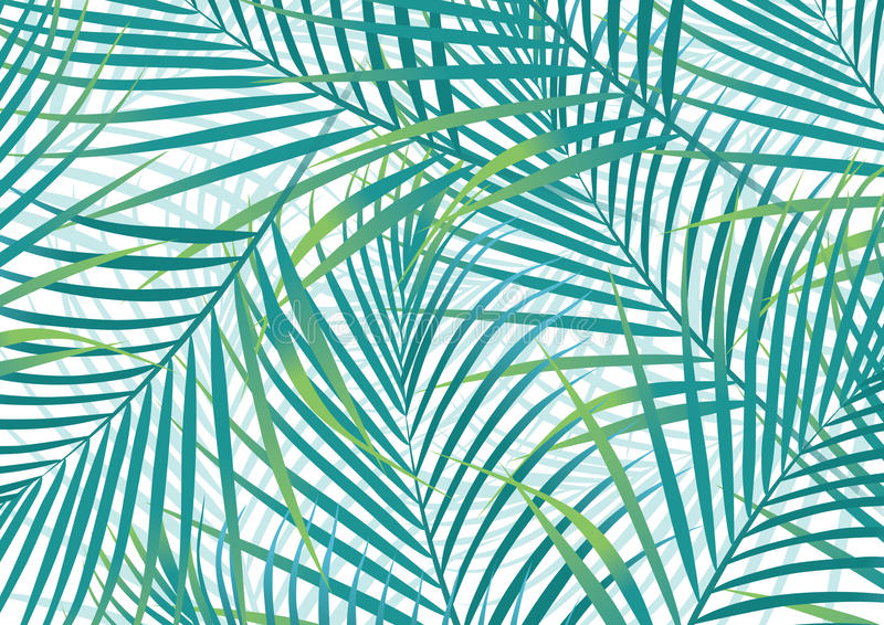 Hojas de palma. stock de ilustración