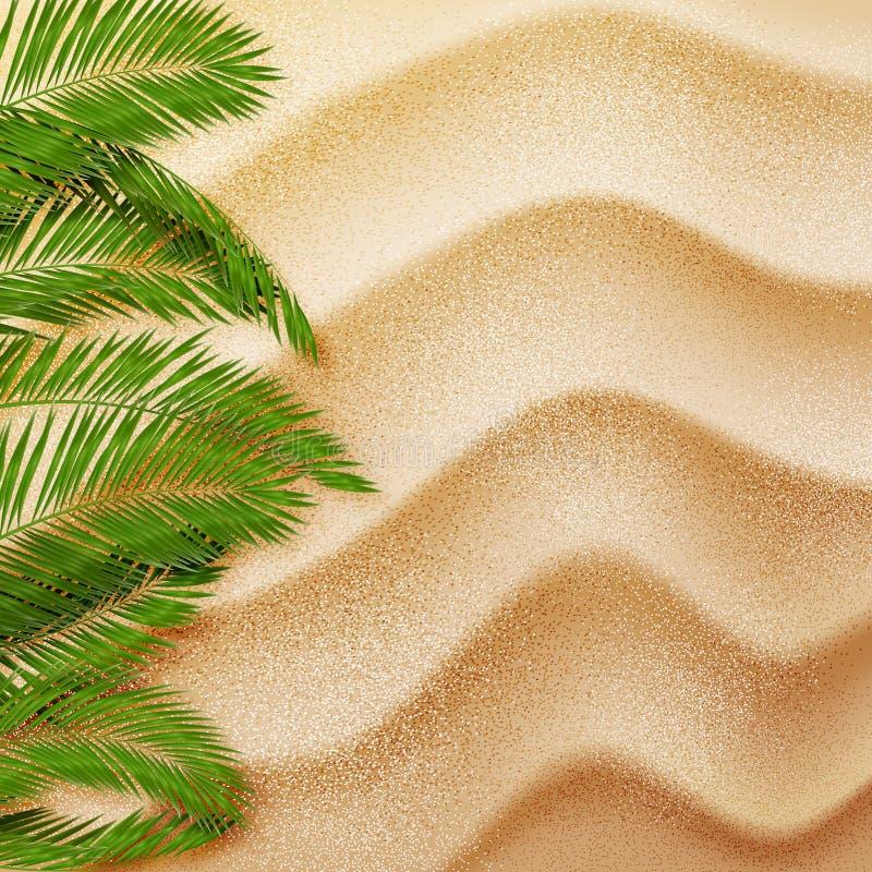 Hojas de palma en la arena Fondo del verano Vector stock de ilustración